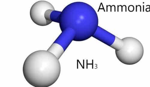 Fungsi Gas Amonia